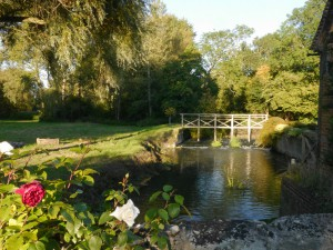 Waterstock Mill morning 1