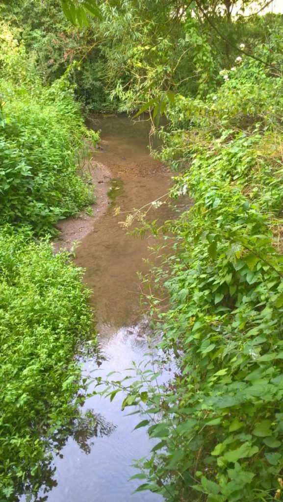 Gravels being exposed in Haseley Brook near Rofford