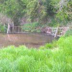 This cattle drinking spot will mobilise sediment, allowing it to flow in to the main river channel and disrupt habitat.