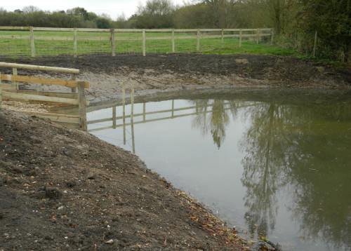This fish refuge was created from an old cattle drinking point along the Thame in Stadhampton. It has proved to be great for juvenile fish and other wildlife.