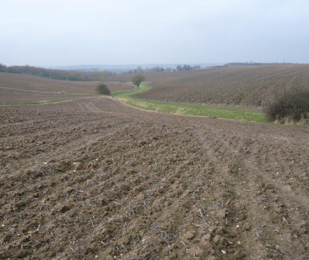 Steep Farmland