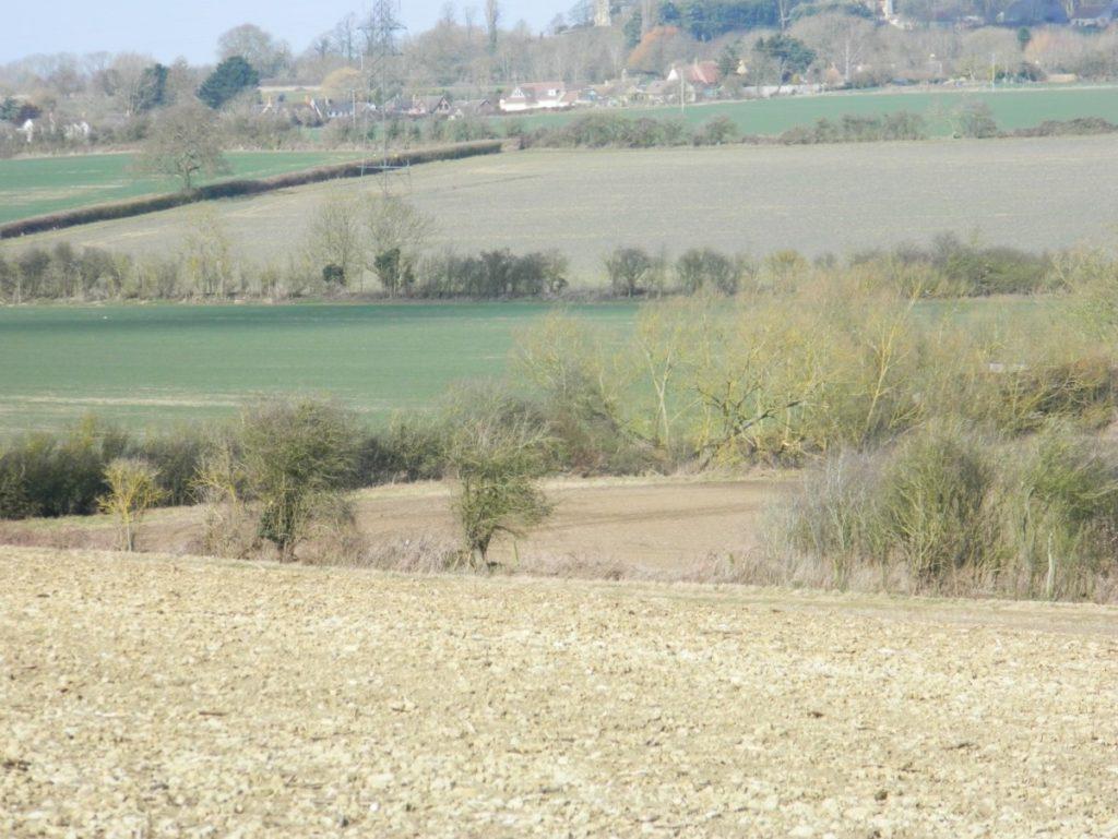 lower-farm
